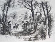 12-Cottage-Avenue-Gate-Final