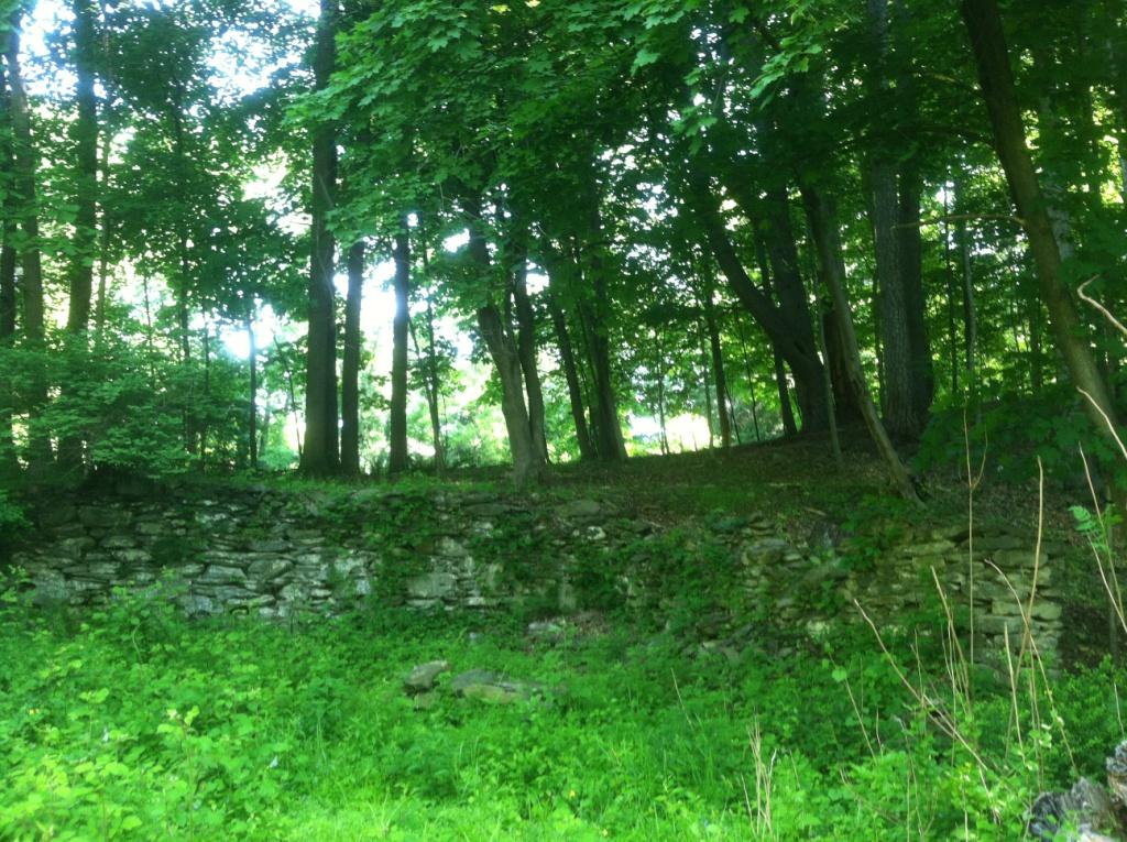 Springside Landscape Restoration Historic Designed
